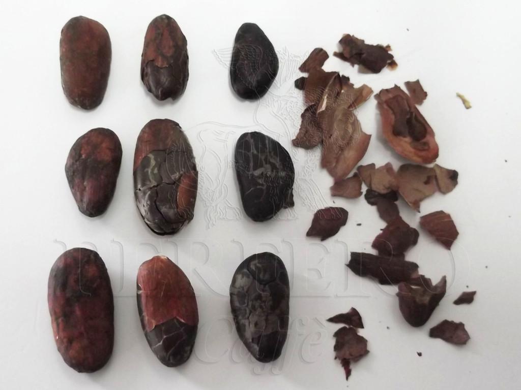 perfero fave di cacao